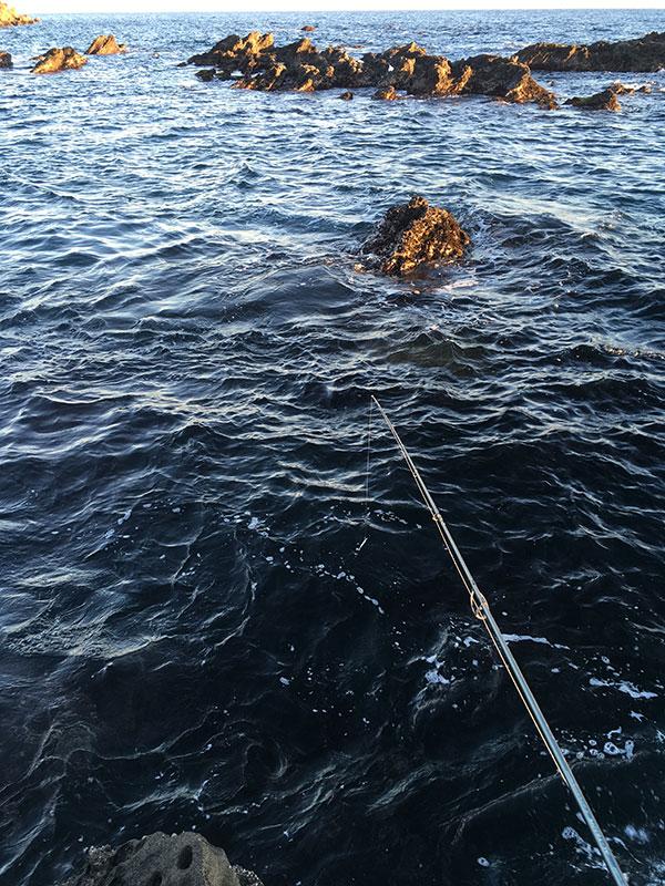 照ヶ崎で釣り