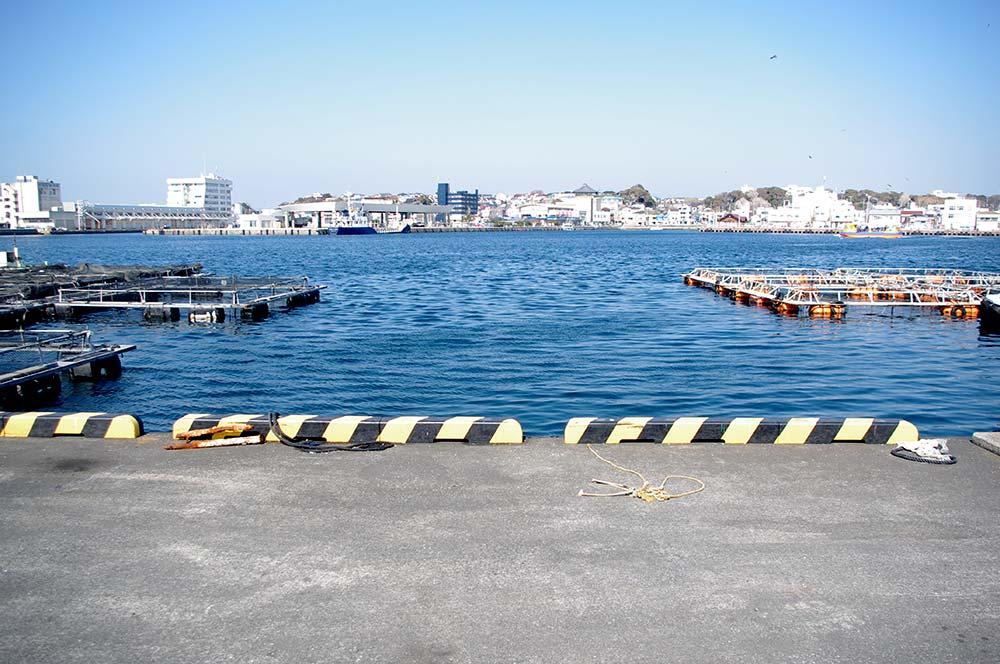 生け簀周りはフカセ釣りに人気