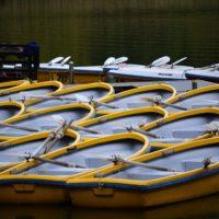 レンタルボート釣り