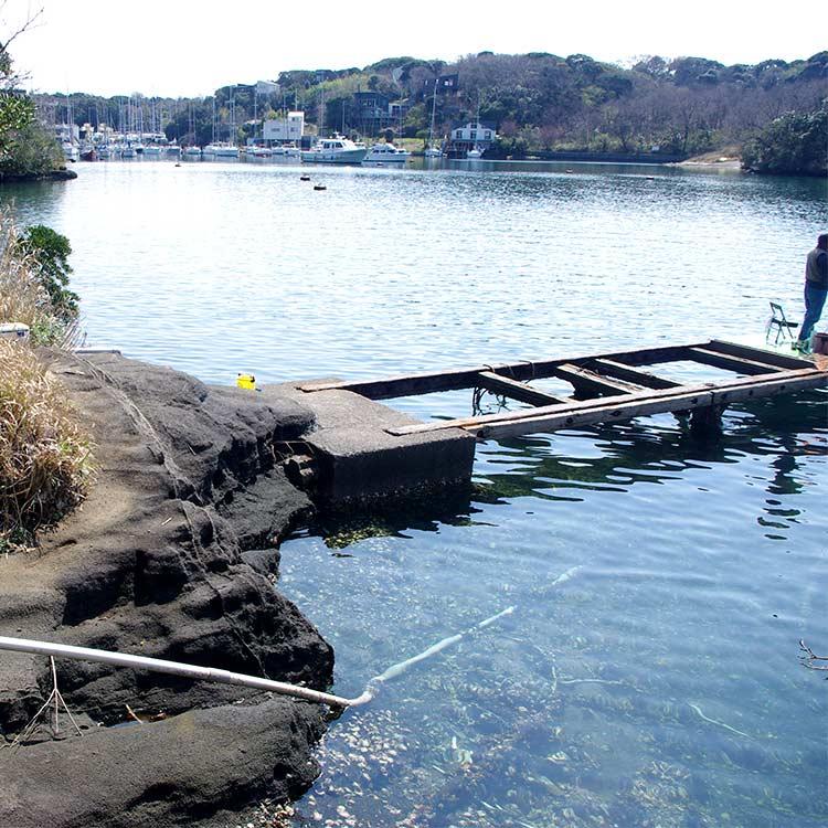 壊れかけの桟橋