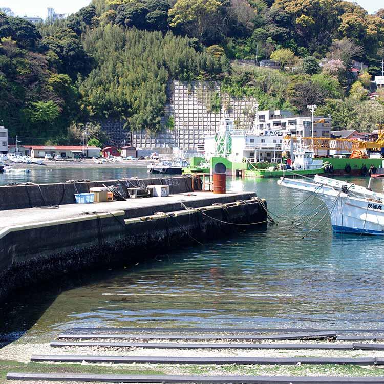 船着き場にある突き出した堤防