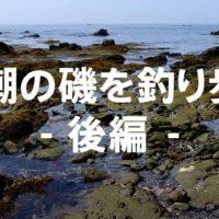干潮の磯を釣り歩く-後編:城ヶ島-