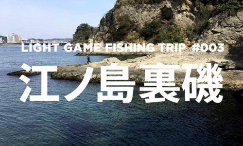 江ノ島裏磯を釣り歩く