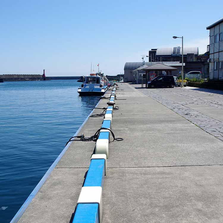 遊覧船乗り場前の釣り可能ポイント