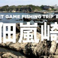 【ライトゲーム釣行見聞録#005/佃嵐崎】5月の三浦和田長浜海岸の小磯をぶらぶらしてきた話