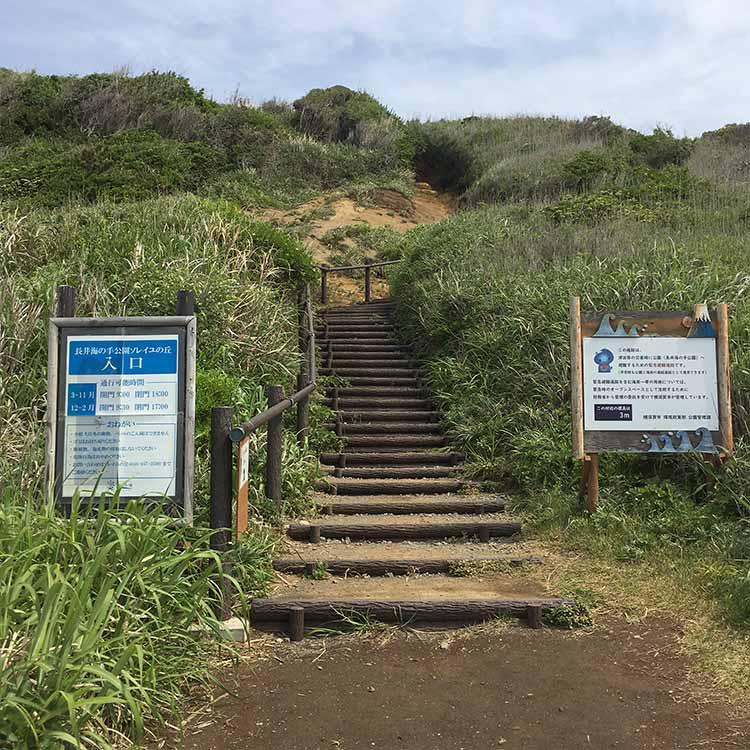 ソレイユの丘への階段