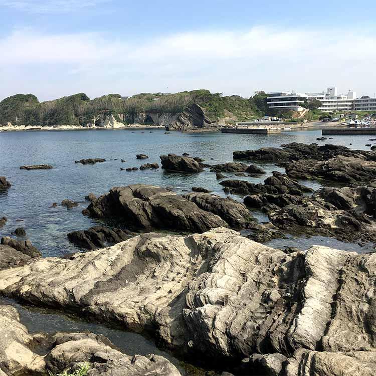 佃嵐崎と暮浜港