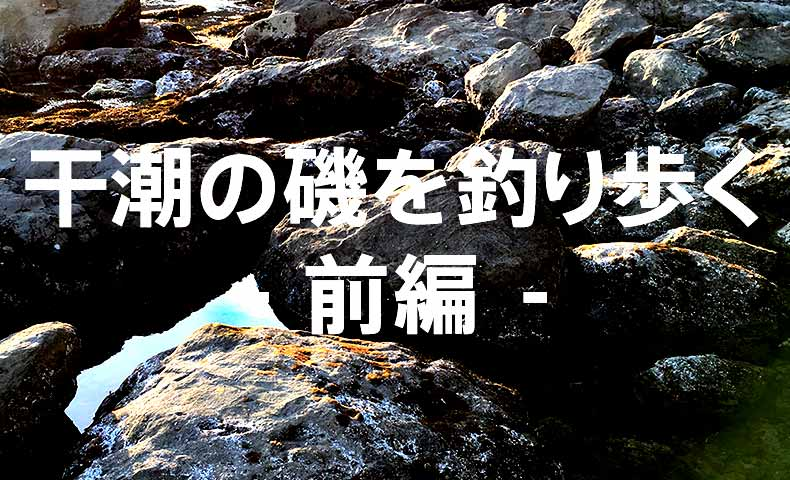 干潮の磯を釣り歩く-前編:江ノ島表磯-