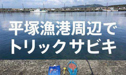 5月の平塚漁港でトリックサビキで小物調査をした話